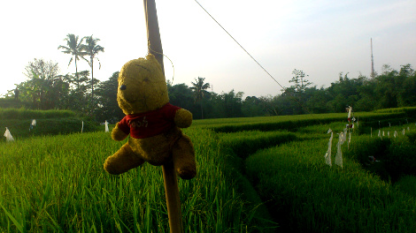 malanguklam tourdebatu winnie the pooh