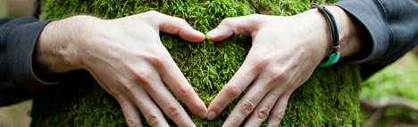 Heart hand on tree with moss, loving the nature